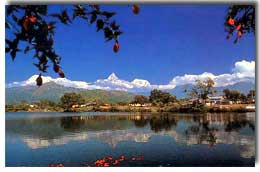 Angel Tours and Travel Nepal Reviews